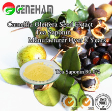 China Popular Manufacure natural foaming agents/ Tea saponin/ camellia oleifera seed extract