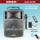 Bluetooth multi-function portable vibrator wireless vinyl power amplifier