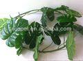 Bon arbre plam artificielle décorative 2014 feuilles. fabriqués en chine