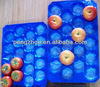 Plastic Blister Bray/Food Packing Tray