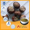 GMP Supplier Bottom Price Horse Chestnut Extract 20% Escin