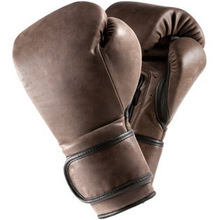 Bird Eye Boxing Gloves Muay Thai Grappling Cage Fighting Gloves MMA