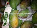 Mangue fraîche variétés ( Sokkary - Zebediah - Sedik )