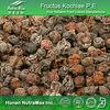 High Quality Fructus Kochiae Extract, Broom Cypress Extract, Broom Cypress P.E.
