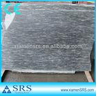 China natural black beauty granite