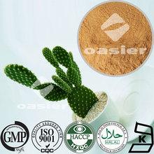 Slimming ingredient/20:1 50:1 100:1/ Brown-yellow fine powder/ Cactus Extract