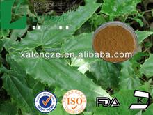 lcariin/epimedium extract powder /horny goat weed p.e