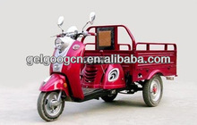 China Three Wheel Cargo Motorcycle/ 100cc Motorcycle