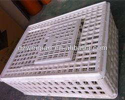 pigeon transport cage