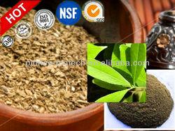 yerba mate tea extract wholesale