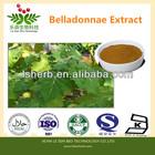 Belladonnae extract hyoscyamine