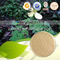 Natural e ácido úsnico 98% hplc natural lichen extrato