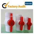 DN 20 25 32 40 Small Plastic Ball Valve from China Supplier