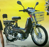 49cc motorcycle/cargo motorcycle/cheap motorcycle