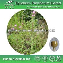 100% Natural Epilobium Parviflorum Extract,Epilobium Parviflorum Extract Powder,Epilobium Parviflorum Extract Supplier 4:1~20:1