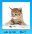 el gato lindo glassescanvas con la impresión de arte de la pared para la decoración