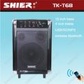 Shier tk-t68 de alta calidad de madera de diseño de altavoces de sonido line array sistema