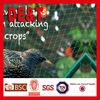 hdpe plastic anti knitted bird netting