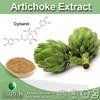Food&Medical Grade Top Quality Artichoke Extract Liquid Artichoke Extract Herb Extract of Artichoke
