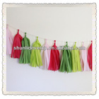 Spring colors Outdoor Decorations Tissue Paper Tassel Garland Kit
