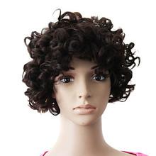 Kanekalon Hair Women Cheap Wigs Natural Afro Curly
