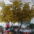 الحفاظ على شجرة اصطناعية، جميع أنواع شجرة كبيرة، الاصطناعي شجرة الجنكة