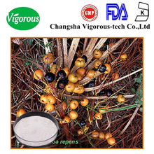 saw palmetto extract supplier/saw palmetto extract 20:1/high quality saw palmetto fruit extract
