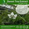 Chinese Sweet Tea Extract, Sweet Tea Leaf Extract ,Sweet Tea Extract Powder