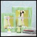 verde diseño de cebra de vidrio marco de imagen oriental