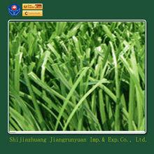 bette SGS garden home decoration for artificial grass