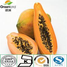natural and organic Papaya extract /fruit powder