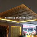 çin yeni ürün kabartmalı deri tavan paneli Dongguan bst