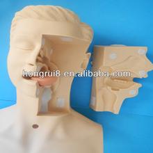 HOT SALES Advanced Medical Suction Training Model, training suction