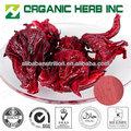 Hibiscus extrato 5% vitamina c pó