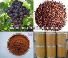 100% Natural Grape Seed P.E. / Grape Seed Extract (p.e.) / Grape Fruit Seed P.E.