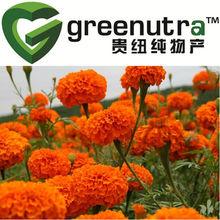 Manufacturer Supply 100% Natural Marigold P.E.