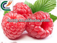 Factory supply organic raspberry ketone powder/ raspberry ketone p.e.powder