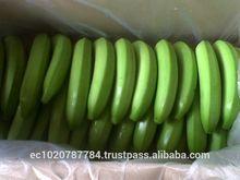 fresh green bananas from Ecuador