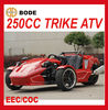 NEW 250CC SPORTS TRIKE EEC(MC-369)