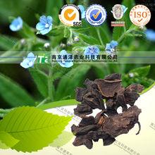 High Quality Herb radices lithospermi