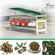 Caper sorting machine factory price