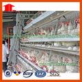 De poulet et de la volaille dans les cages en batterie pour l'agriculture équipement de la machine