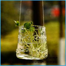 2014 newly developped popular home decorations plant terrarium