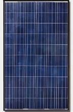 Canadian Solar CS6P-250P 250W Poly Blk/Wht Solar Panel