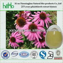 4% polyphenols echinacea angustifolia extract