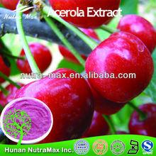 Manufacturer Supply High Quality Acerola Cherry P.E/Malpighia punicifolia L./Acerola Cherry Extract Vitamin C 17% VC