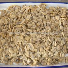 growing reishi mushrooms 400g/200g