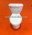Articoli sanitari/due- toletta di un pezzo s- toilette trappola/WC