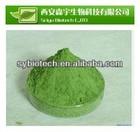 barley grass juice powder,100-200mesh,Organic Certified