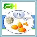 yumurta beyazı protein tozu gıda